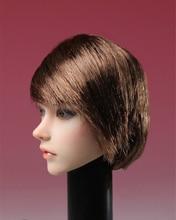 1/6 Scale Asia Female Black Straight Short Hair Brown Curls Head Sculpt SDH002 Long fit for 12 inches Femal Body