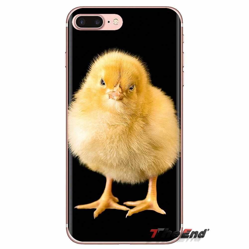 תינוק אפרוח צהוב אמנות דפוס עבור Huawei נובה 2 3 2i 3i Y6 Y7 Y9 ראש Pro GR3 GR5 2017 2018 2019 Y5II Y6II TPU שקוף מקרה