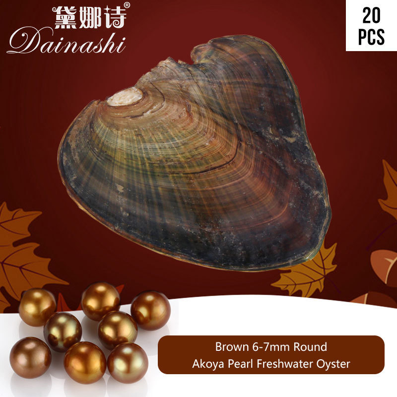 20pcs/Lot Success Brown Color Freshwater Pearl Oyster AAA Akoya Round Pearl Oyster Wholesale Pearl Beads For DIY Jewelry Making