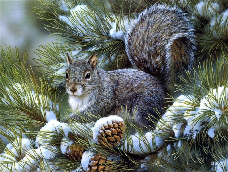 40*30cm New squirrel 5D Diamonds Embroidery Diamond Mosaic Round Painting Cross Stitch Kits Home Decoration