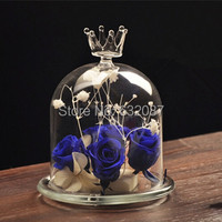 BT060407 Beautiful Crown Design Glass Dome Vase Creative Glass Cover Microscape Terrarium Glass Gifts