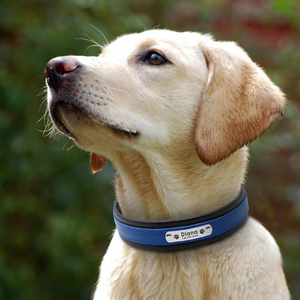 Великий собачий воротник натуральної - Продукти для домашніх тварин - фото 5