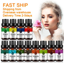 10ml Water-soluble Essential oils for Aromatherapy Diffusers Pure Plant Tangerine Fennel Black Pepper Oil 12 Scents Optional