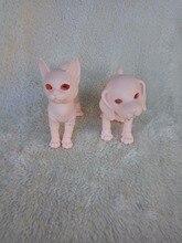 Stenzhorn (stenzhorn) BJD mignon chatons et chiot de haute qualité jouets pour vente