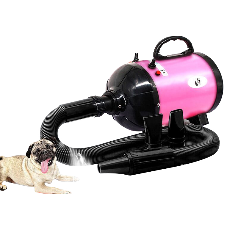 Dog Hair Dryer High Power Cat Dog Grooming Dryer Silent Blowing Dog Cat Pet Hair Dryer Blue Pink Color Fast To Russian lider kids urban blue cat and dog