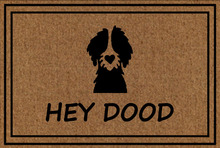 Hey Dood Doormat Entrance Floor Mat Funny Door Decorative Indoor Outdoor 23.6 by 15.7 Inch