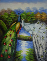 Hot Sale 100 Hand Painted High Quality Animal Canvas Painting Peacock Painting Wall Pictures For R