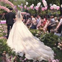 2018 Boat Neck Light Unique Wedding Dress Feather Applique Thin Bride Dream Long Trian High Quality Lace Up Ball Gown As Picture