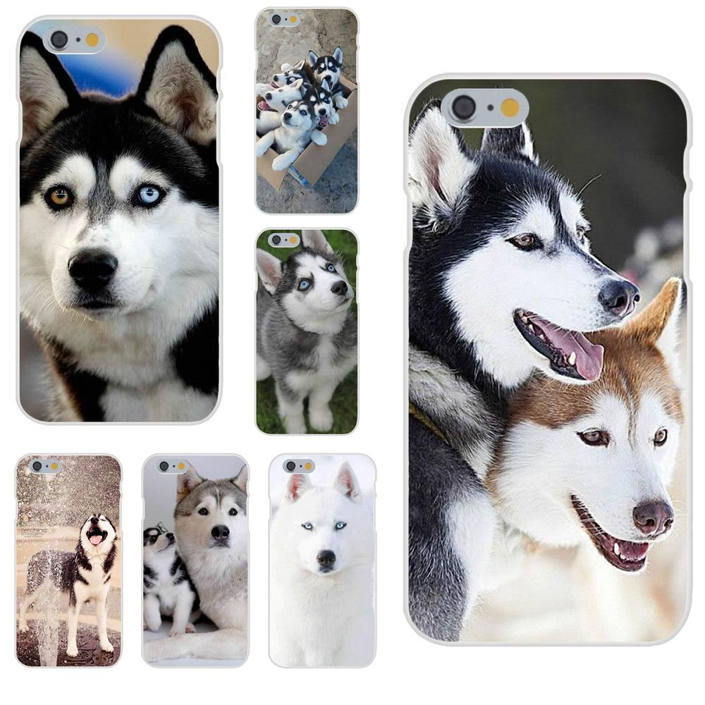 Aladdin Siberian Husky <font><b>Dog</b></font> Soft TPU <font><b>Cases</b></font> Cover For Galaxy J1 J2 J3 J330 J4 J5 J6 <font><b>J7</b></font> J730 J8 2015 2016 2017 2018 mini Pro image