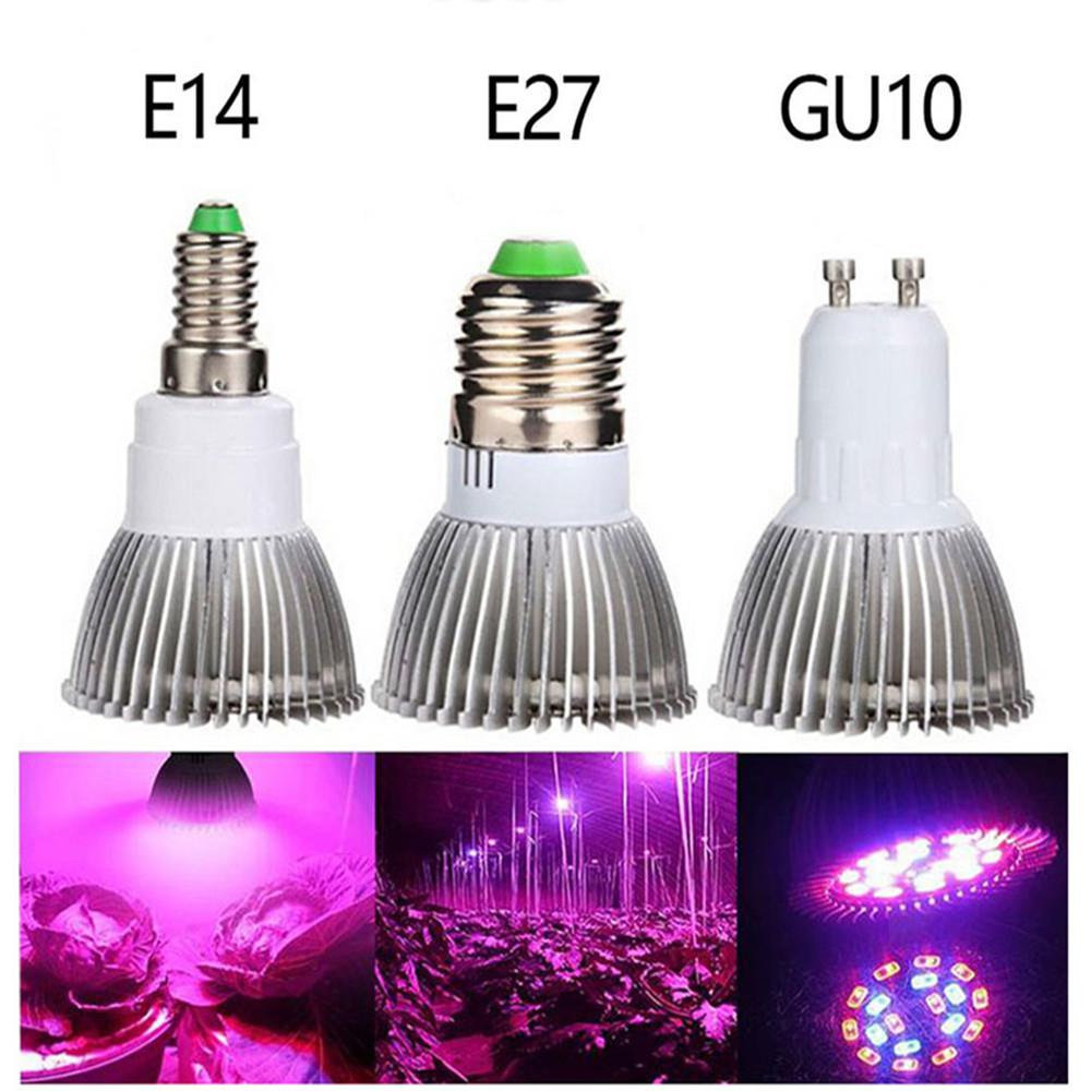 HobbyLane E14 E27 GU10 LED Plant Grow Light Bulb Fitolampy Phyto Lamp For Indoor Garden Plants Flower Hydroponics Grow Tent Box