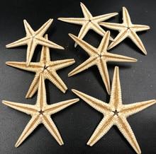 Size 3-4cm 50pcs Mini Starfish Craft Decoration Natural Sea Stars Five finger DIY Beach Cottage Wedding Decor  wedding