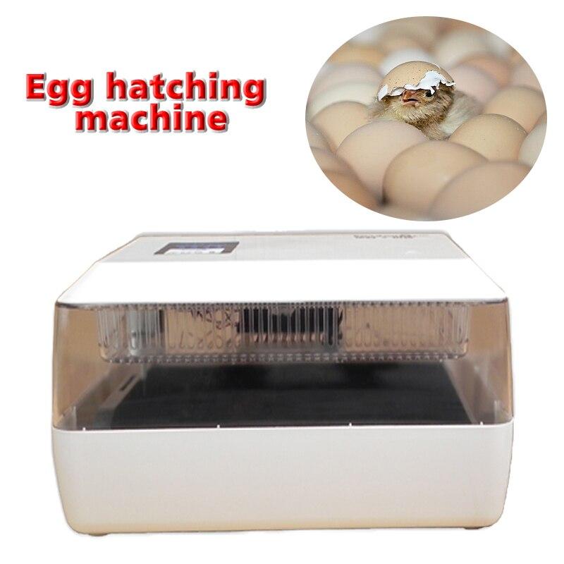1 PC 220 V/12 V gospodarstwa domowego miniaturowe inkubator automatyczny mini inkubator do jaj przez 60 jaja kurze, 40 kaczka jaja, 90 jaj przepiórczych