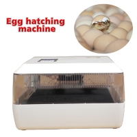 1PC 220V/12V Household Miniature Automatic Incubator Mini Egg Incubator for 60 Chicken Eggs, 40 Duck Eggs, 90 Quail Eggs