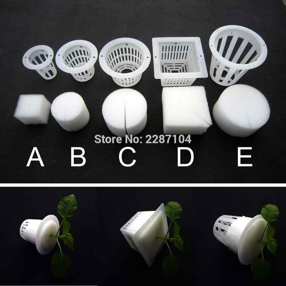 10 pcs Colarinho Branco Malha Pote Copo Net Cesta + Clone Inserção de espuma Aeroponic Hidropônico Planta Vegetal Cresce A Semente Germinar 5 tamanho