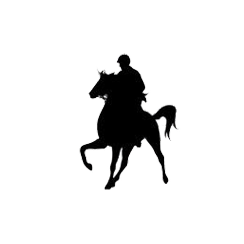 8 4*11 8CM Vinyl Car Decals Fashion Equestrian Competition Vaulting Horse  Riding Black/Silver