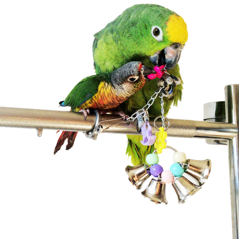 Parakeet Toys And Accessories : Pet bird cage hanging toy colorful wooden blocks swing