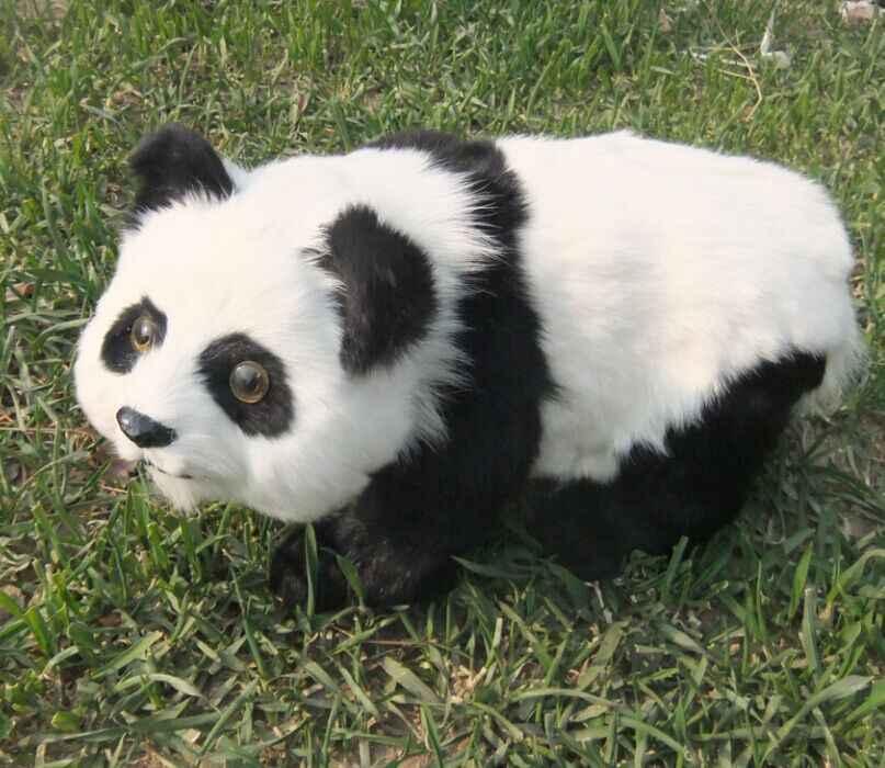 Большой моделирования стоя панда игрушка полиэтилена и мех белый и черный панда кукла подарок около 38x22 см 2457