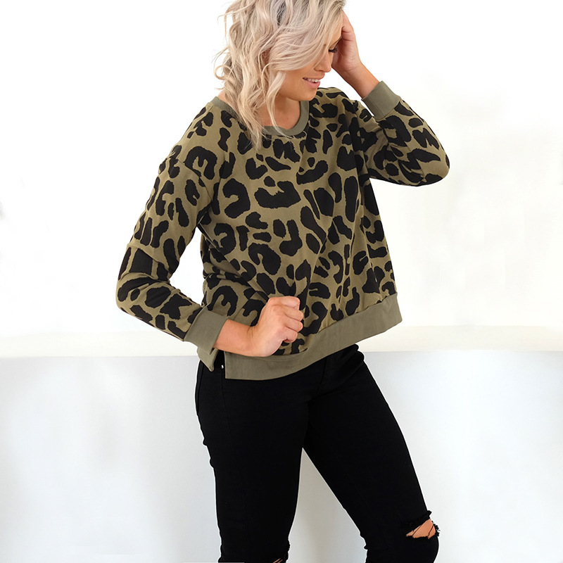 leopard hoodies womens 2019 pullover woman sweatshirts 2019 spring autumn casual long sleeve tops o-neck female sweatshirt thumbnail