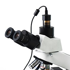 SCMOS High-Speed USB2.0 3.0M Stereo Microscope Eyepiece Camera with Advanced Video & Image Processing Application 40x stereo microscope with 40x up right image small size 2x objective and wf20x eyepiece fixed monocular head