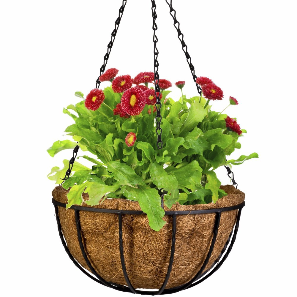 Wrought Coconut Half Round flowerpot Hanging Pots Window Rattan Decorative Pots Wall Iron Garden Plant Planter Flower Basket