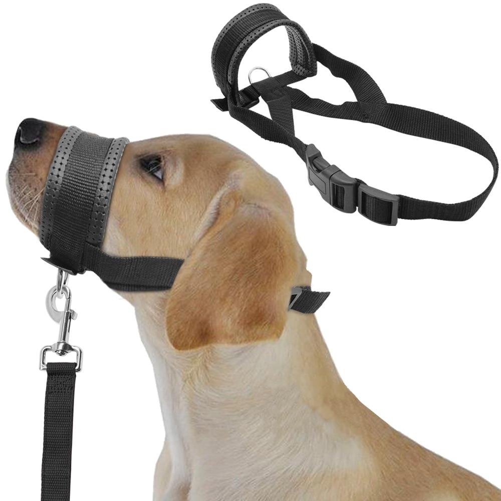 soft padded nylon dogs head collar dog training halter no