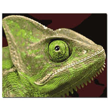 Decoration Oil Painting For Living Room,Animal Lizard,Oil By Numbers,Diy Paint Number