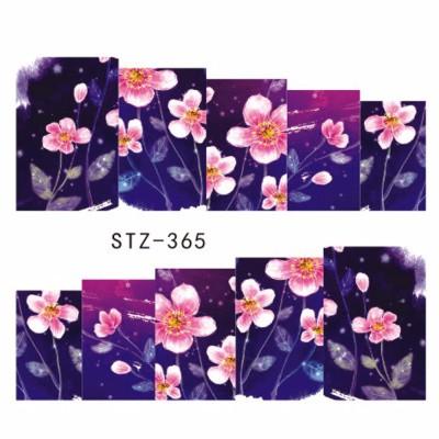 stz365