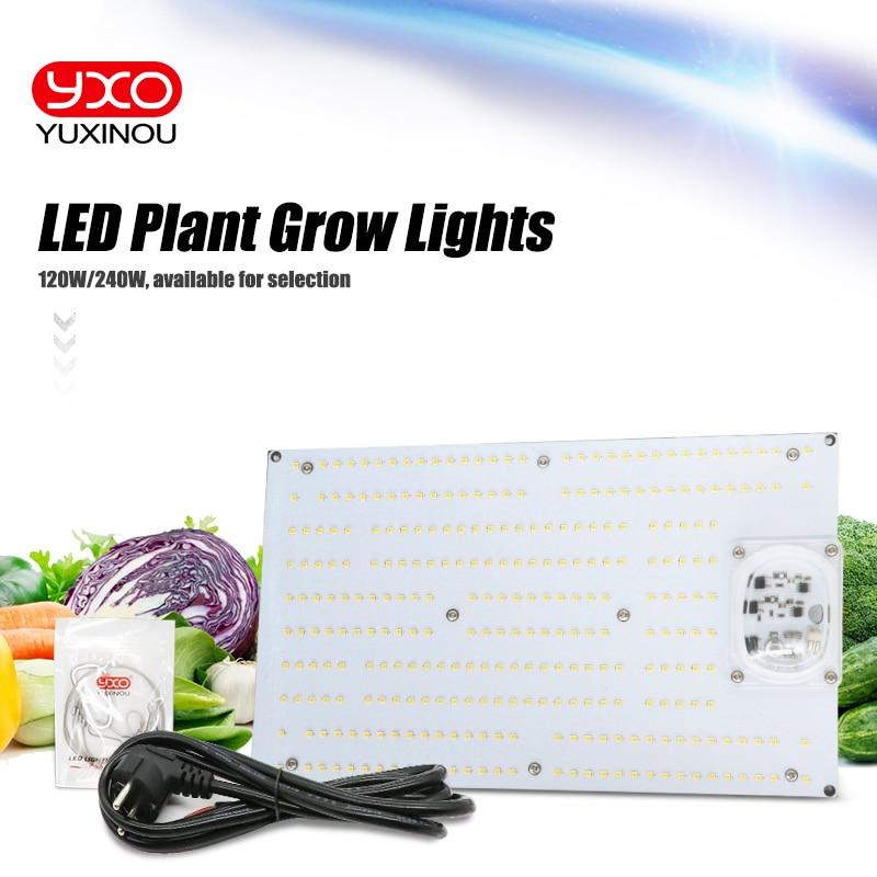 Placa Samsung LM301B Quantum 3000K mista Red 660nm 120W DIM 240W Driverless AC 220V LED Planta crescer Lâmpada Espectro Completo