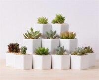 Great Idea For Small Plants Cute White Ceramic Vases Hexagon Flower Pot Creative Small Flowerpot Vase