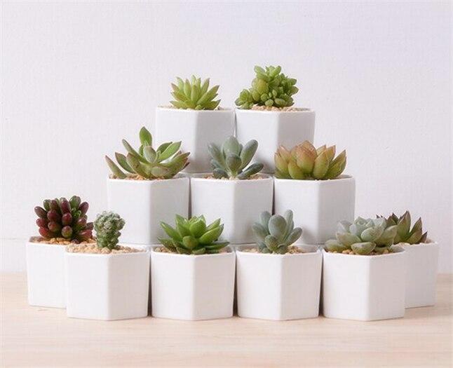 Vase Ideas Home