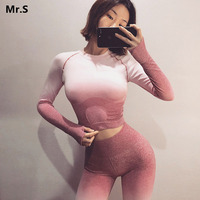 Ombre Seamless 2 Piece Set Women Sport Suit Gym Workout Clothes Long Sleeve Fitness Crop Top And Scrunch Butt Leggings Yoga Set