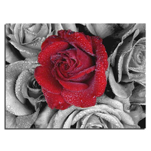 Rote rose 40×30 Handwerk Direct Selling Baumwolle Neues freies Verschiffen Hand Diy Diamant Malerei Kit 3d Voll Stickerei