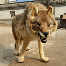 Polyethylene&furs artificial wolf large 105x65cm wolf 1:1 model handicraft prop home garden decoration gift d2409