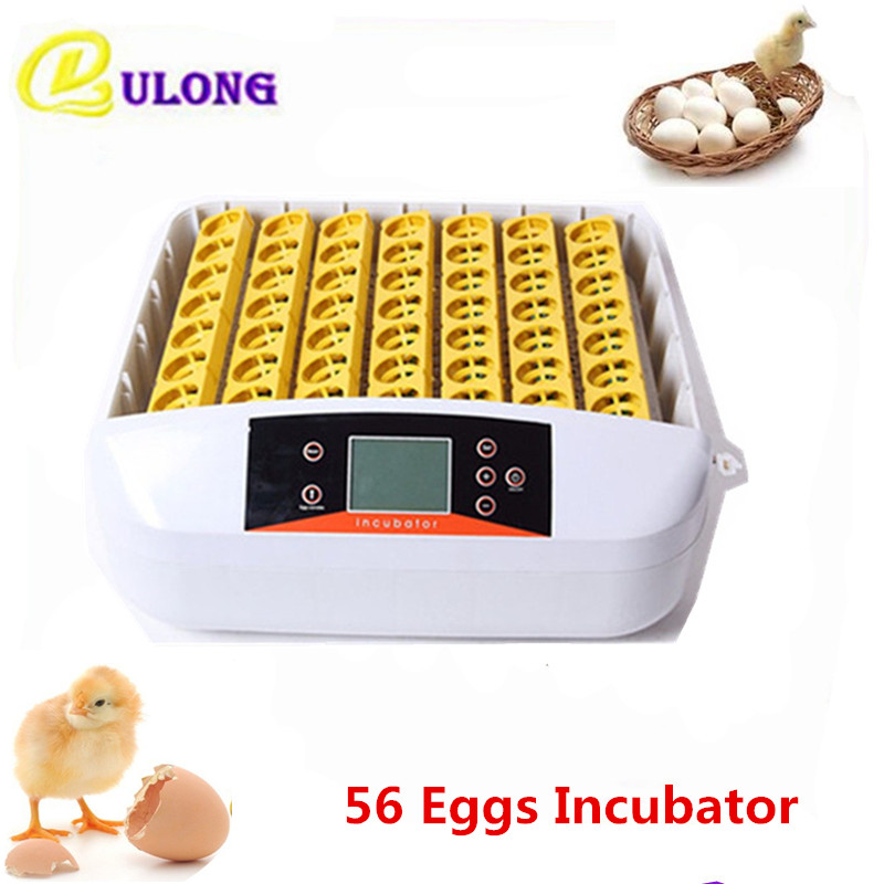 Mini home use poultry incubator machine with digital clear hatchery factory price  chicken brooder tools equipment factory price 4mm marking machine pin with copper cover