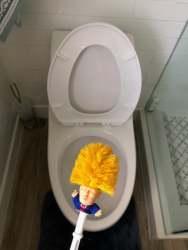Трамп туалетной щетки
