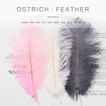 Ostrich Feather 10~25cm White Pink Feathers for Bracelet Ring Jewelry Lipstick Cosmetic ins Photography Background Accessories ostrich feather 10 25cm white pink feathers for bracelet ring jewelry lipstick cosmetic ins photography background accessories