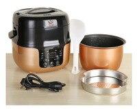 2L Smart Multifunktionale mini reiskocher haushalts kleine haushalts appliance kuchen gedämpfte ei fisch mit suppe Termin