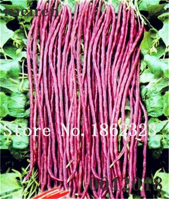 10 pçs/saco Bonsai Feijão Não-OGM vegetais, feijão verde, Planta de crescimento Natural, pátio & Planta para Casa Jardim Varanda Ao Ar Livre