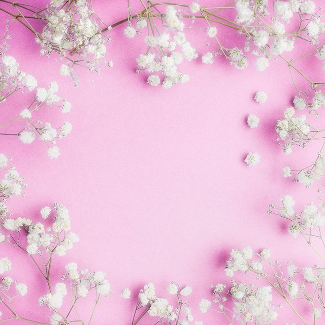 Pink Photography Backdrops White Flowers Backgrounds for