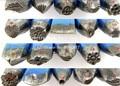 Frete Grátis!!! Hot sale 20 pçs/set GH422 Assorted socos para a jóia, jóias socos, ferramentas de jóias e máquina