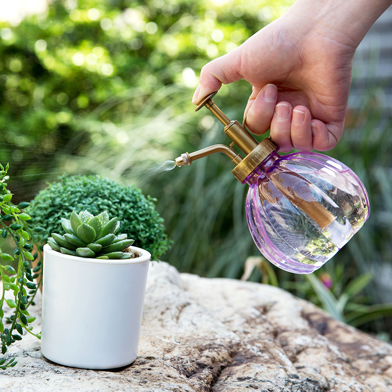 Watering spray bottle succulent plants watering bottle Watering spray bottle succulent plants watering can