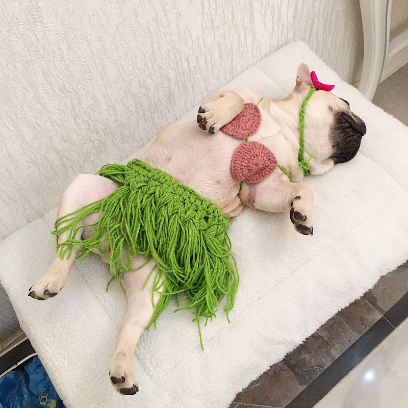 2018 Summer Hawaiian Pet Dog Costume Bikini Hula Skirt Holiday Beach Outdoor BBQ Tassel Flower Dress for Small Bulldog Cos Cloth