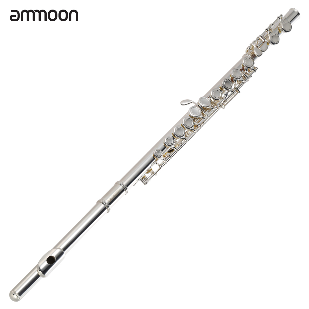 ammoon High Quality Flute Cupronickel Silver Plated 16 Closed Holes C Key with Case Screwdriver Wind Instruments for Beginnerammoon High Quality Flute Cupronickel Silver Plated 16 Closed Holes C Key with Case Screwdriver Wind Instruments for Beginner