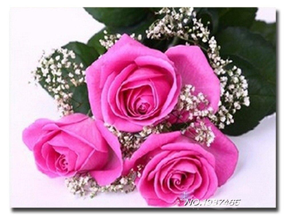 Вышивка алмазами роза