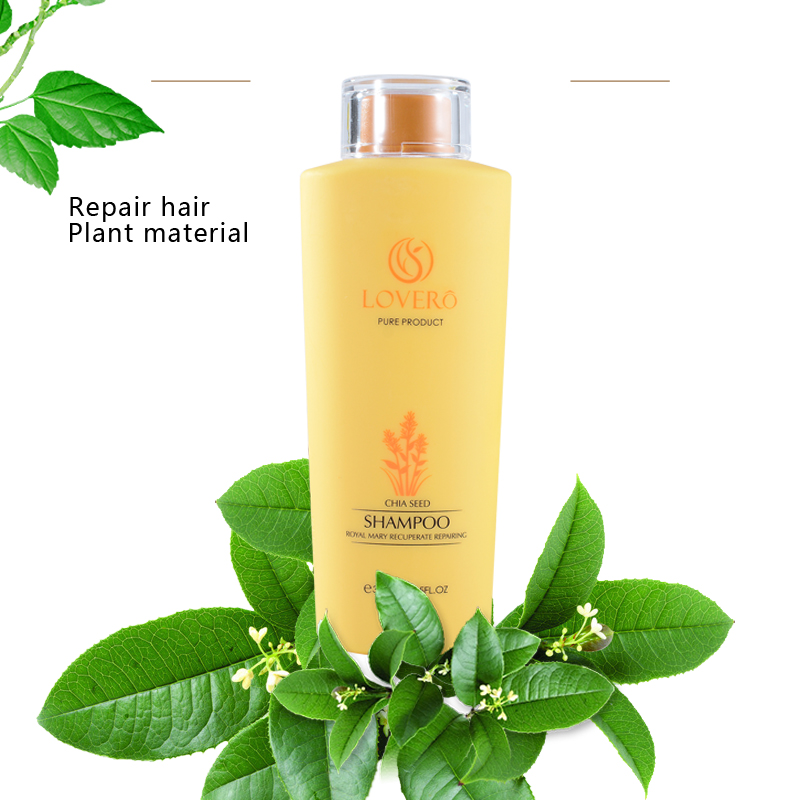 Remove oil and prevent hair loss Shampoo 300ml Nourishing Natural Hair Growth Fast Dense Thicker Anti Hair Loss SU15 in Conditioners from Beauty Health