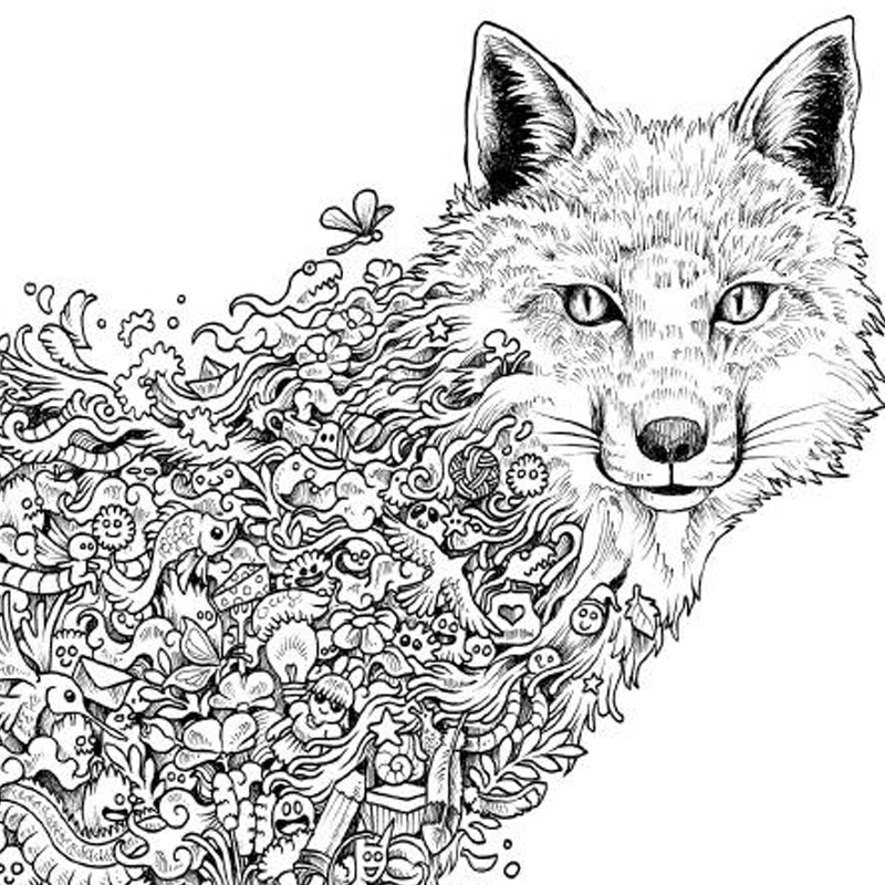 Animorphia Coloring Book Review Aliexpress Buy Books For Adults Children