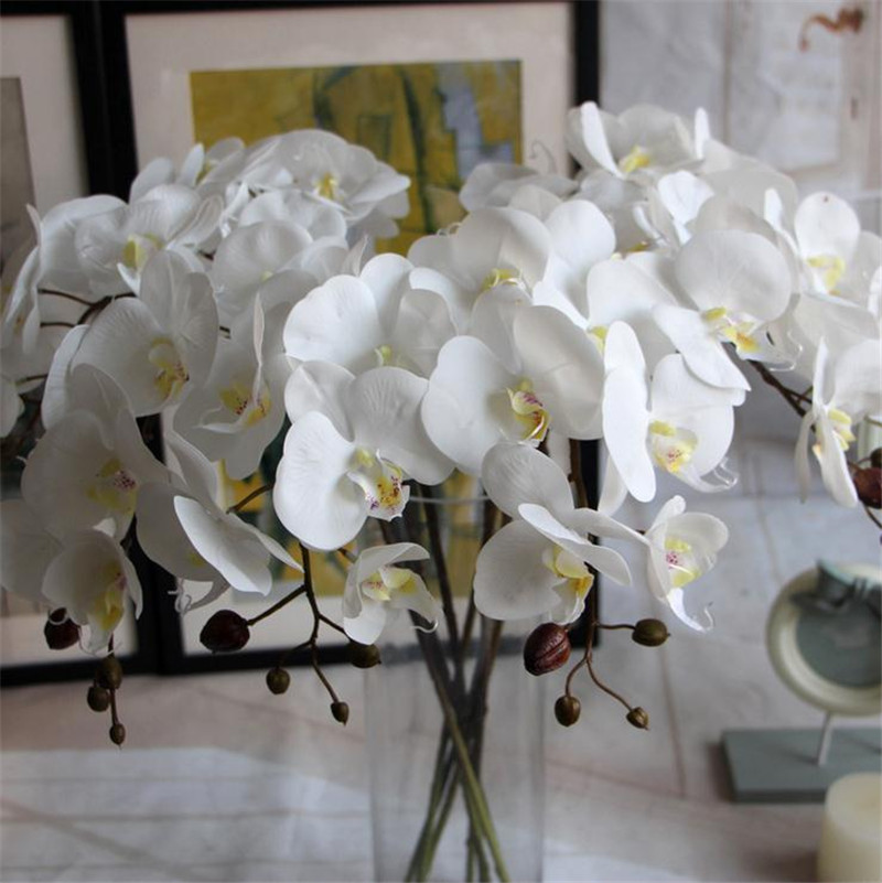 Compare prices on stem orchid online shopping buy low