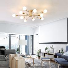 Светодиодный Потолочные светильники для гостиной спальни Ресторан