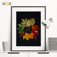 NOOG Leaf Decay Process Wall Art Canvas Painting Nordic Poster And Printed Picture Living Room Decoration