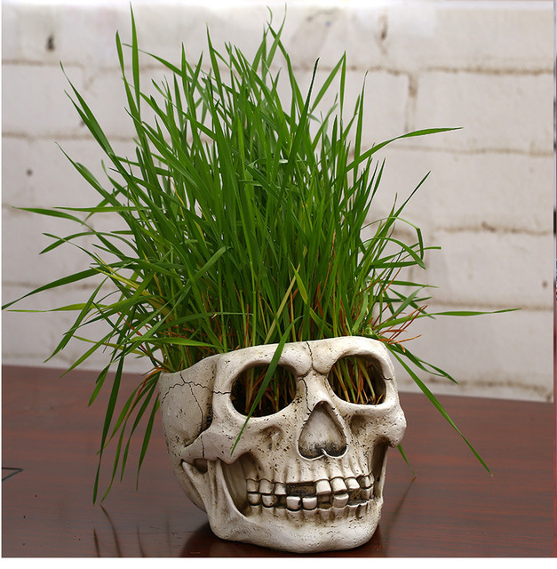 1PC Human Skull Planter Archaize Garden Storage Pots Resin Finish ...